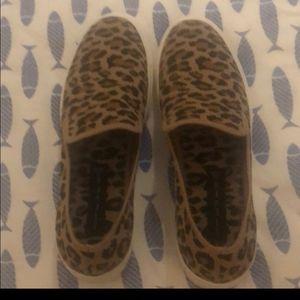 size 8.5 cheetah steve madden sneakers